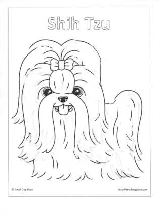 yorkie coloring pages - puppy coloring pages
