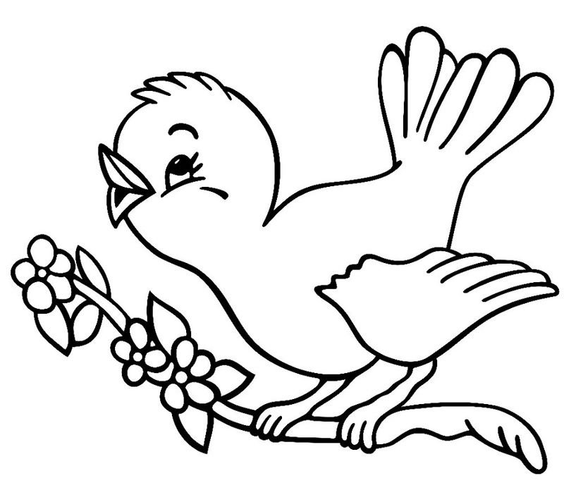 Activity Pages For 5 Year Olds Coloring Pages