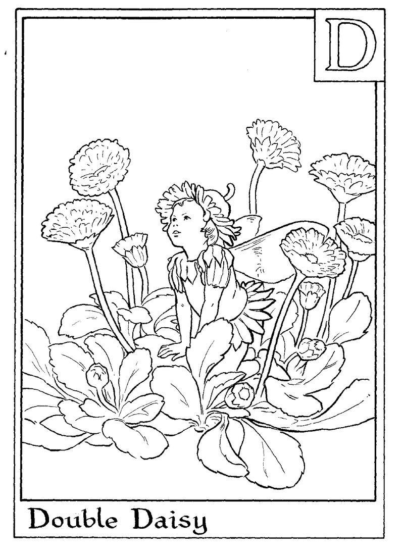Alphabet Fairy Daisy Coloring Page