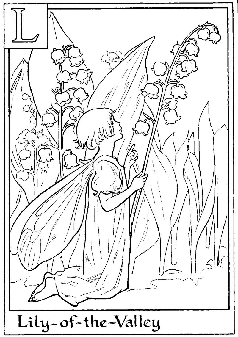 Alphabet Fairy Lily Coloring Page