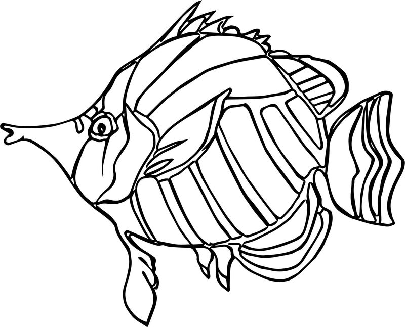 Ancient Angel Fish Coloring Page