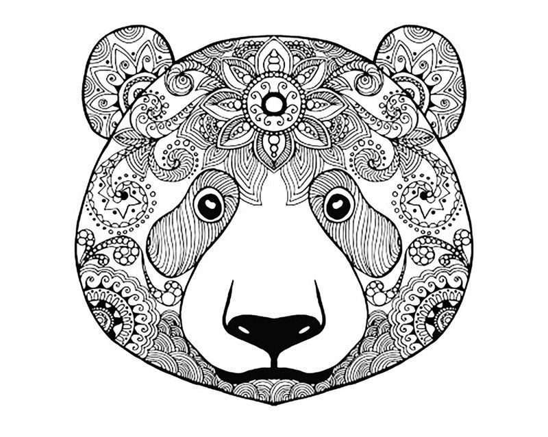 Animal Coloring Pages For Adults Bear Face 001