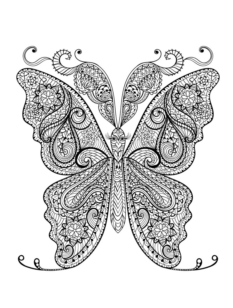 Animal Coloring Pages For Adults Butterfly 001