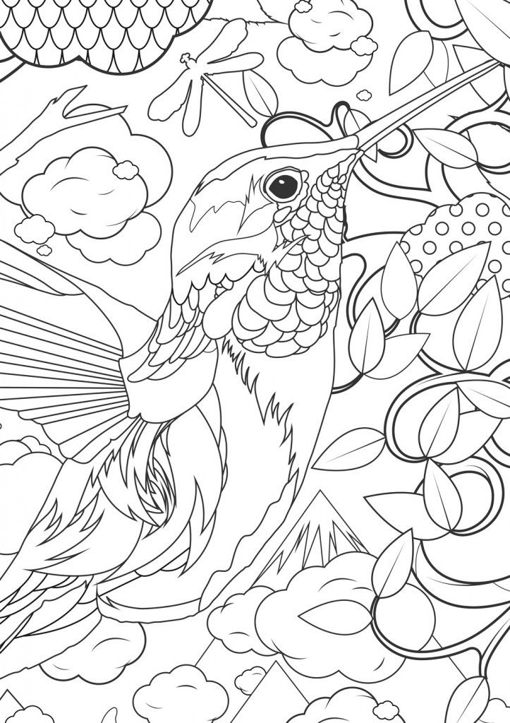 Animal Coloring Pages For Adults Humminbird 001