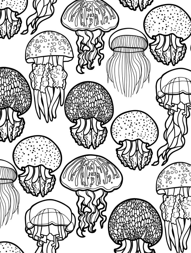 Animal Coloring Pages For Adults Jellyfish 001