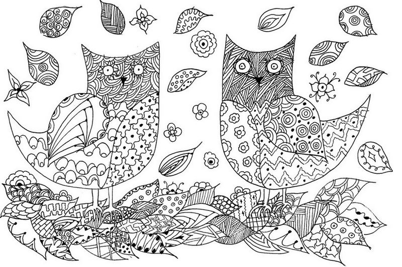 Animal Coloring Pages For Adults Owls 001