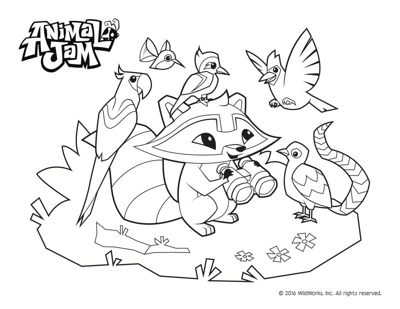 Animal Jam Coloring Pages Raccoon