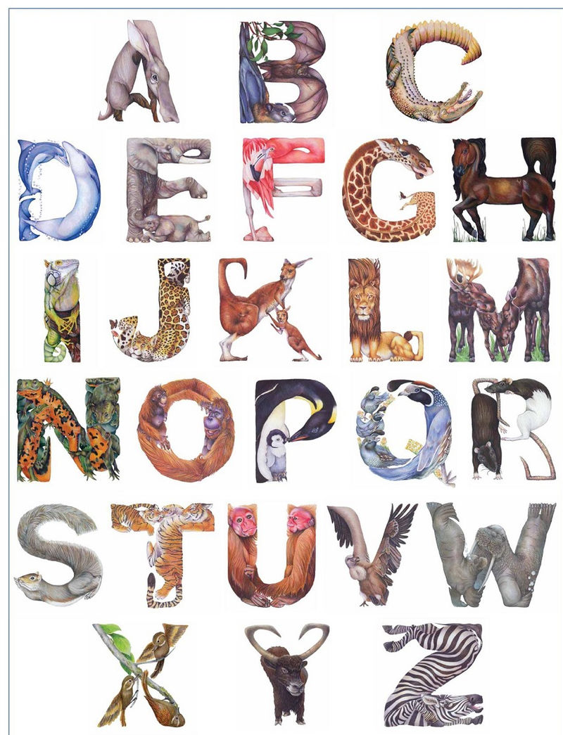 Animal Shaped Letters 1 002