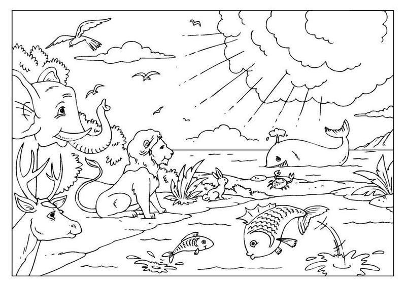 Animals Creation Coloring Pages