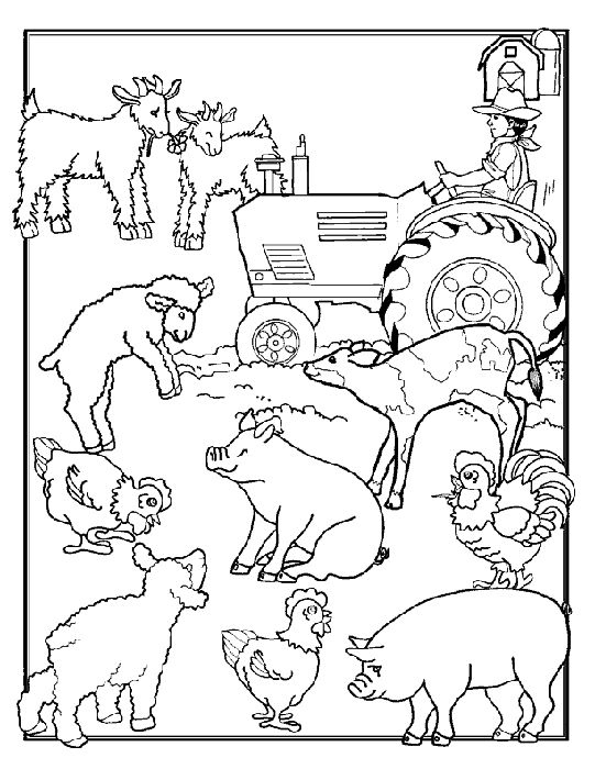 Animals On Farm Coloring Page