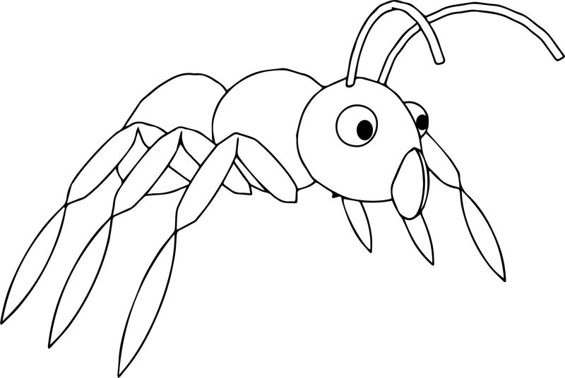 Ant Persp View Coloring Page