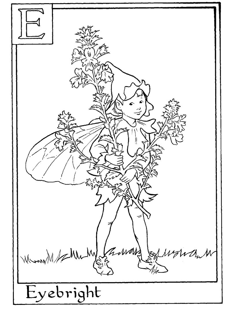 Aphabet Fairy Eyebright Coloring Pages