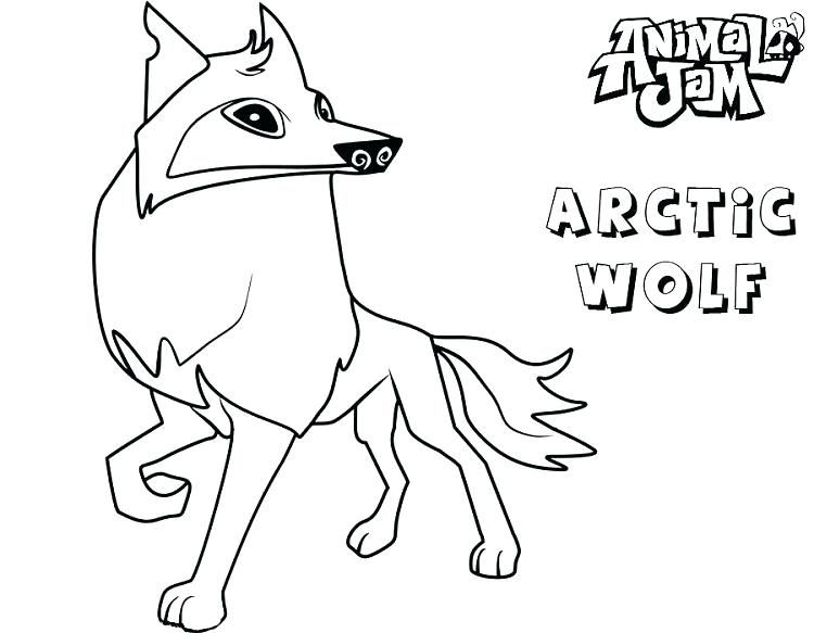 Arctic Wolf Animal Jam Coloring Pages