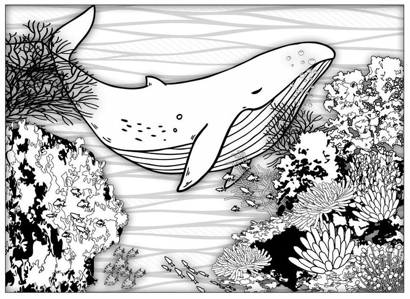 At Beach Coloring Book Fish