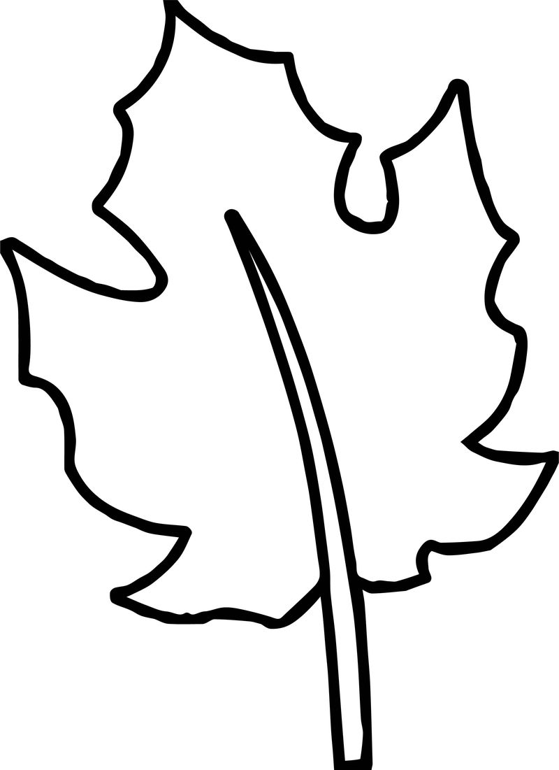 Autumn Bold Line Leaf Coloring Page