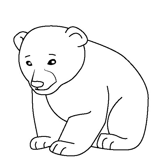 Baby Animal Coloring Pages Bear Cub