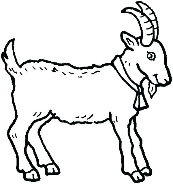 Baby Animal Coloring Pages Goat