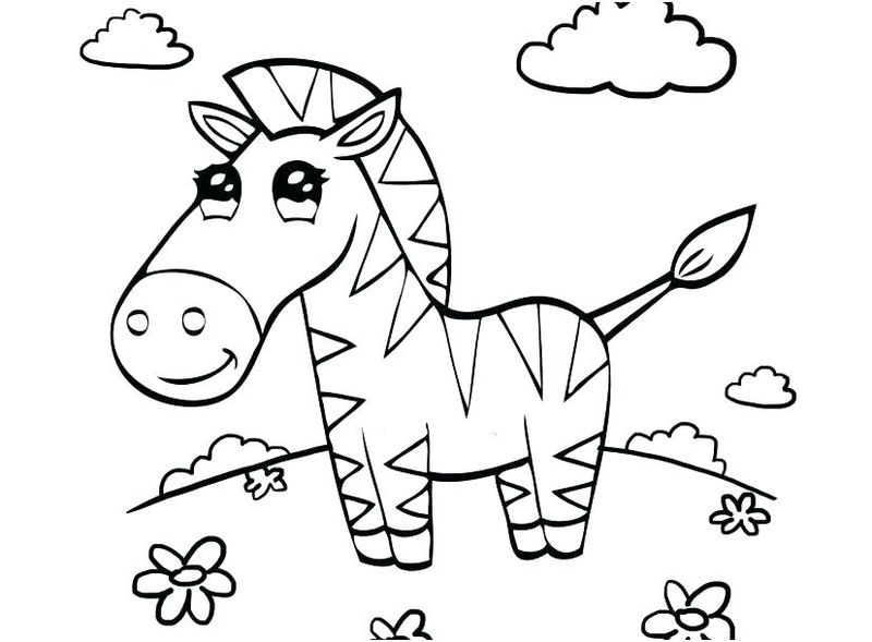 Baby Animal Coloring Pages Zebra