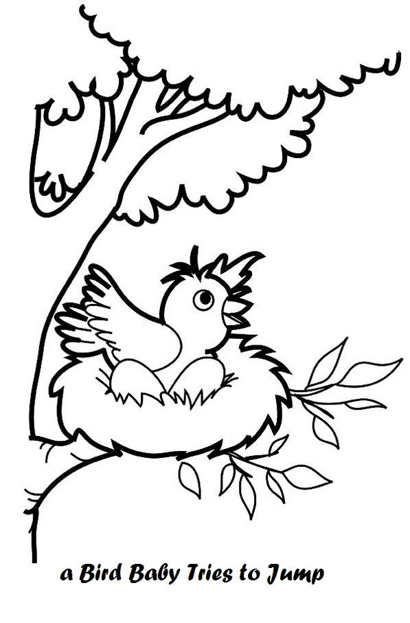 Baby Bird In Nest Coloring Page