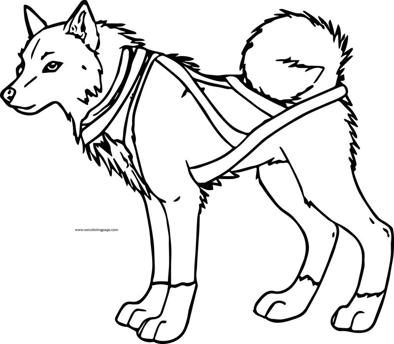 Balto Dog Coloring Page 12
