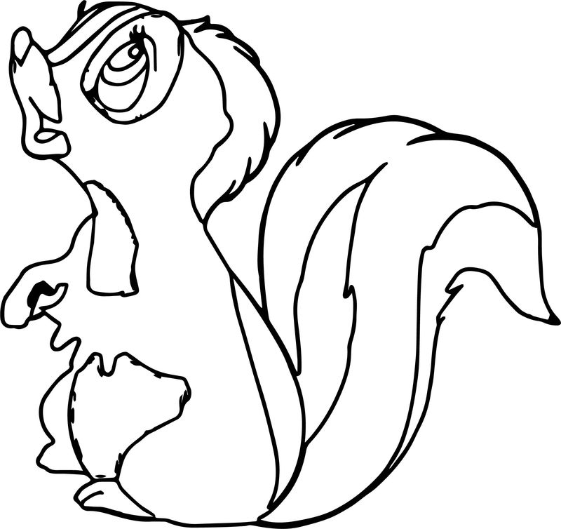 Bambi S Flower The Skunk Flower Faces Coloring Pages