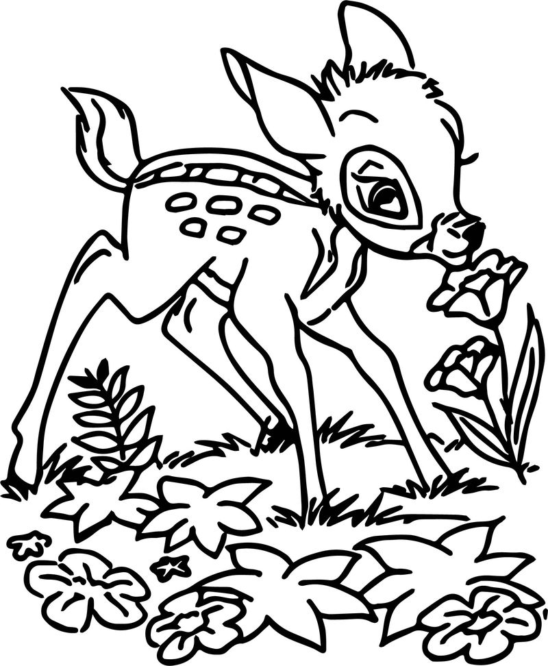 Bambi Smell Flower Coloring Pages