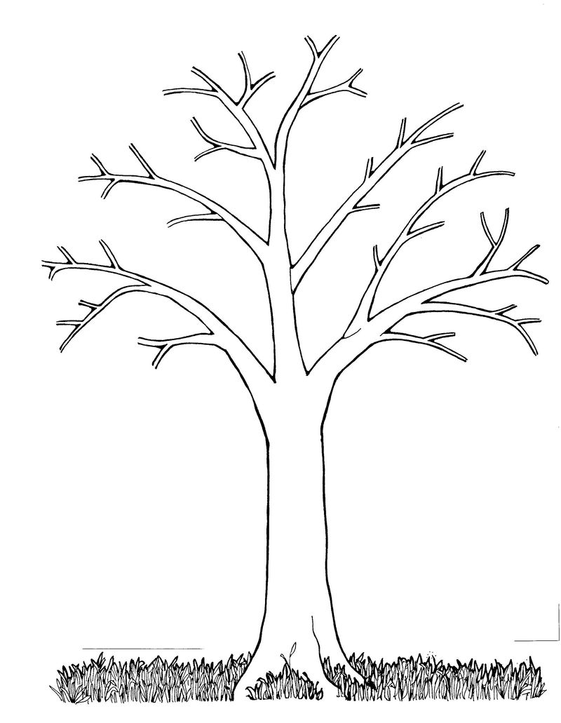 Bare Tree Coloring Page Simple