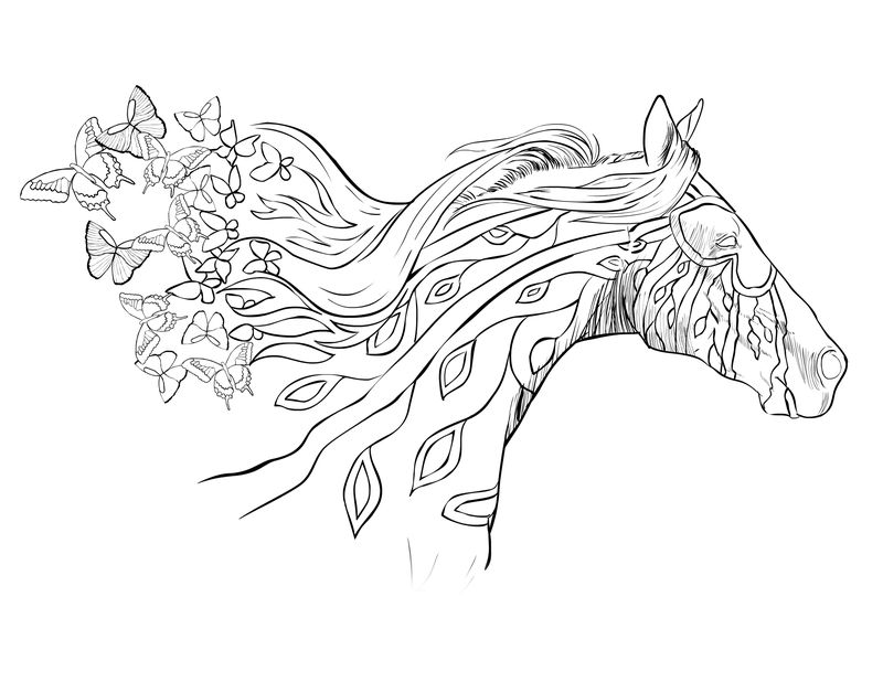 Beautiful Horse Coloring Page Image