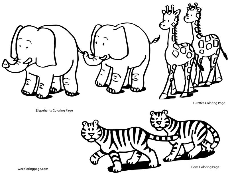Best Animals Coloring Pages 01