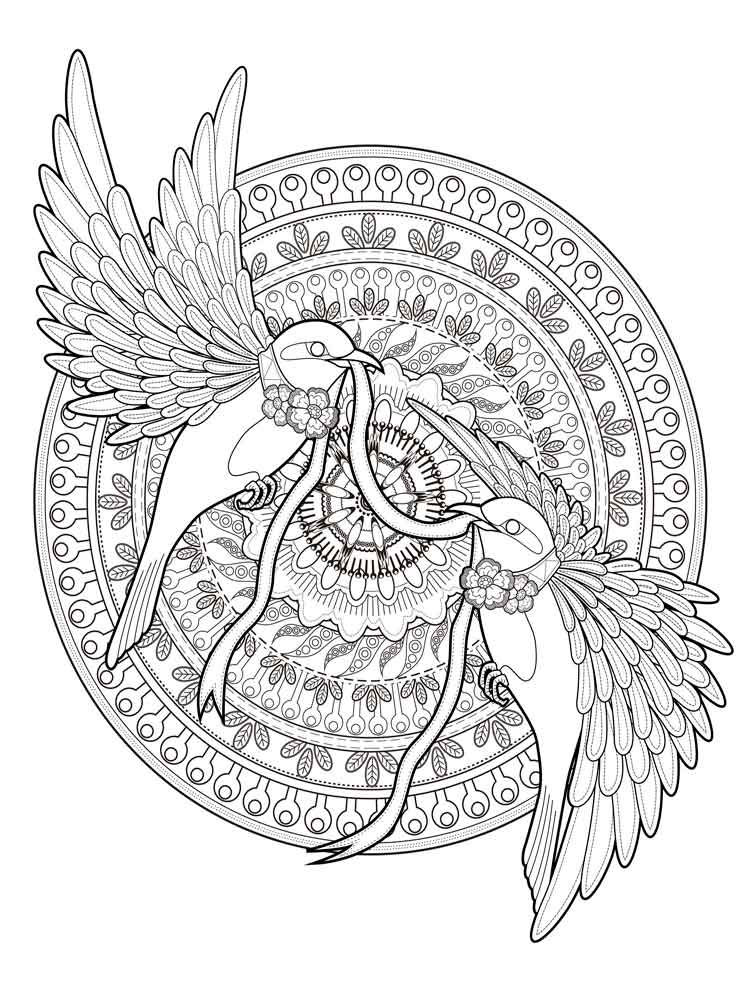 Birds Animal Mandala Coloring Pages
