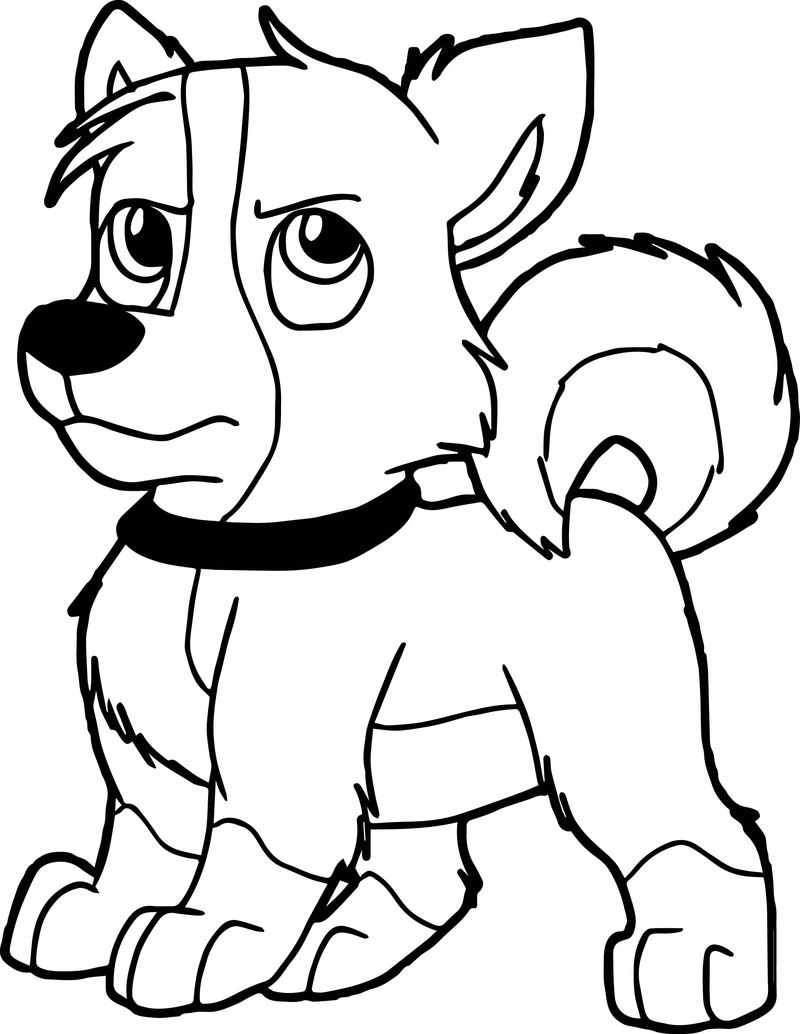 Blizzard Dog Coloring Page