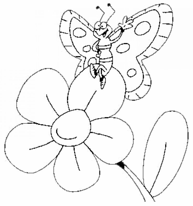 Butterfly And Flowercoloring Pages