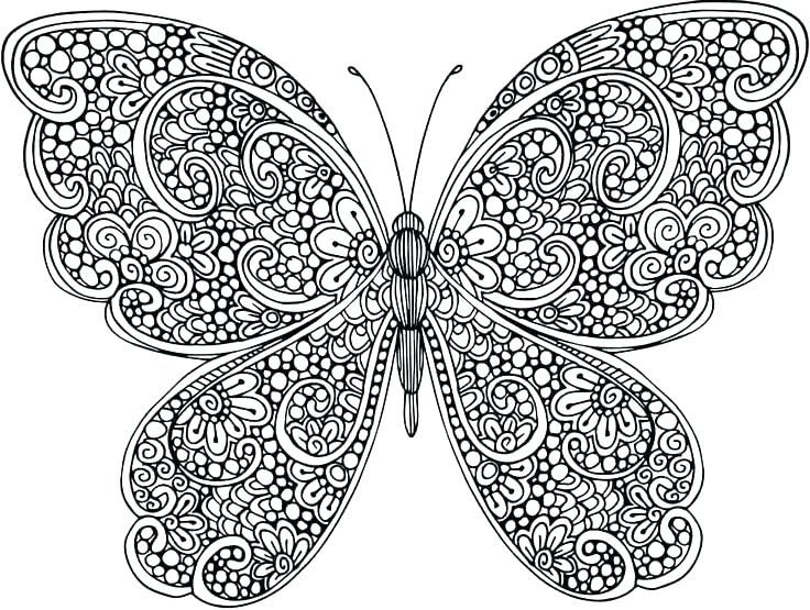 Butterfly Animal Mandala Coloring Pages