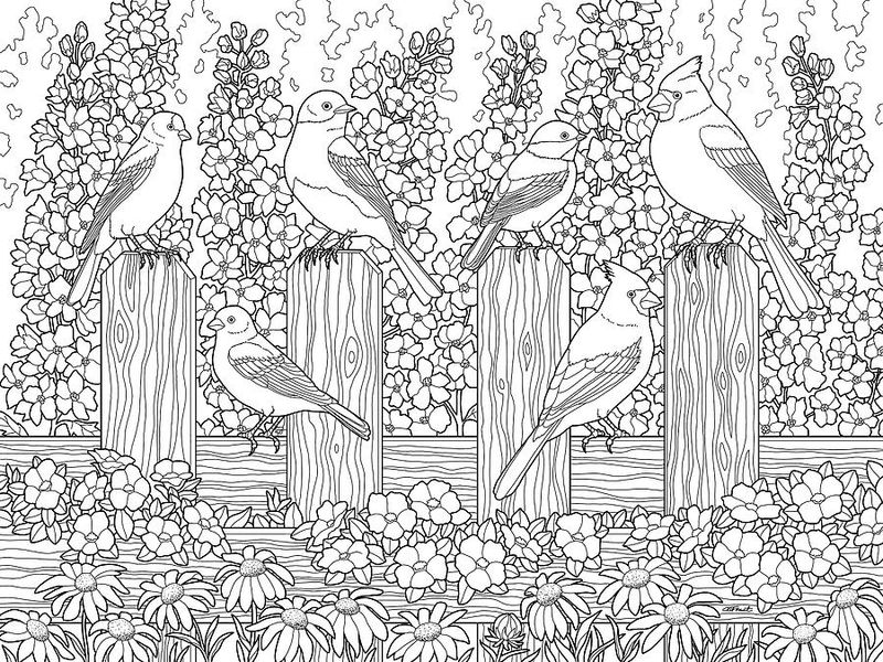 Cardinals in flower garden coloring page