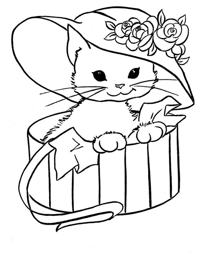 Cat With Hat Animal Coloring Pages