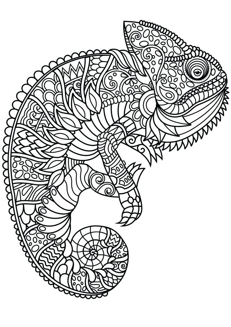 Chameleon Animal Mandala Coloring Pages