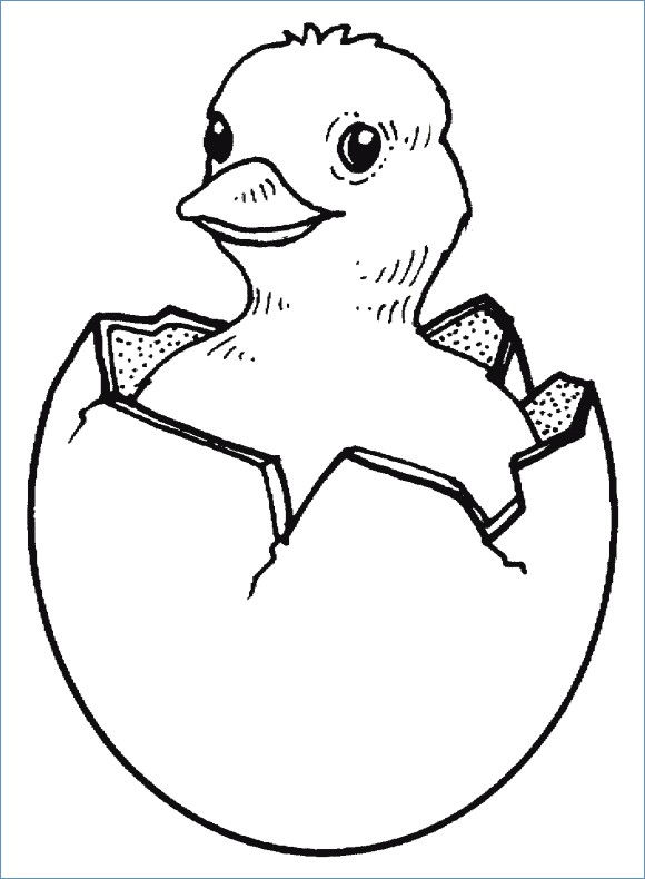 Chick Hatching Coloring Page