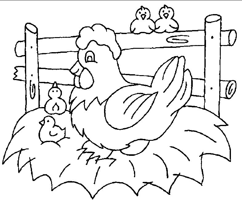 Chicken Coloring Page Printables 1