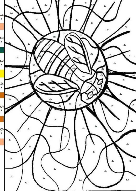Color By Numbers Bee