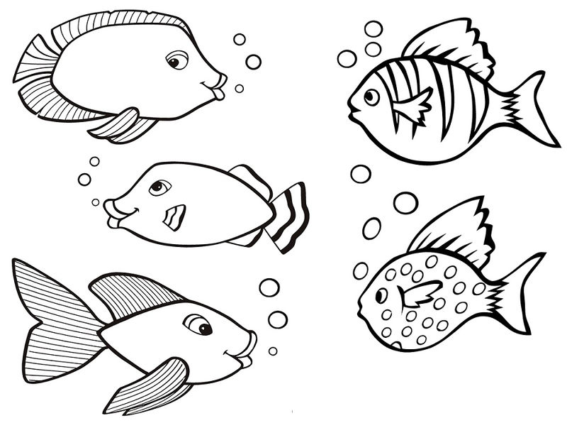 Color Pages Of Fish Different
