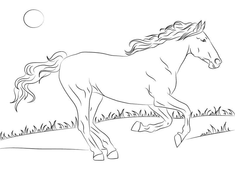 Color Pages Of Horses Activity