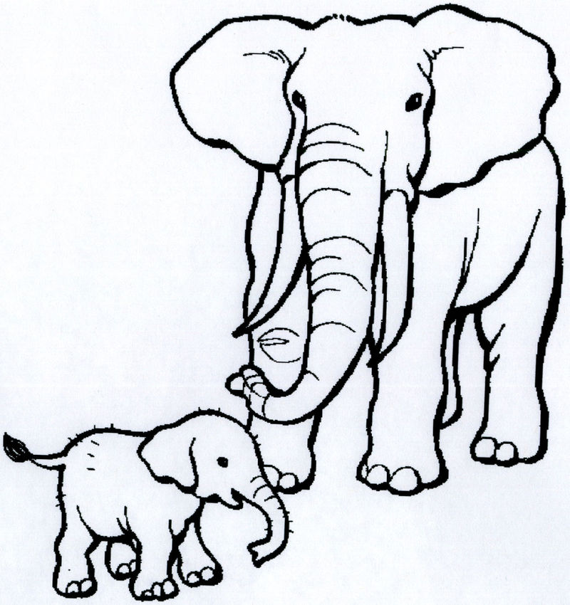 Coloring Book Animals For Kids 001