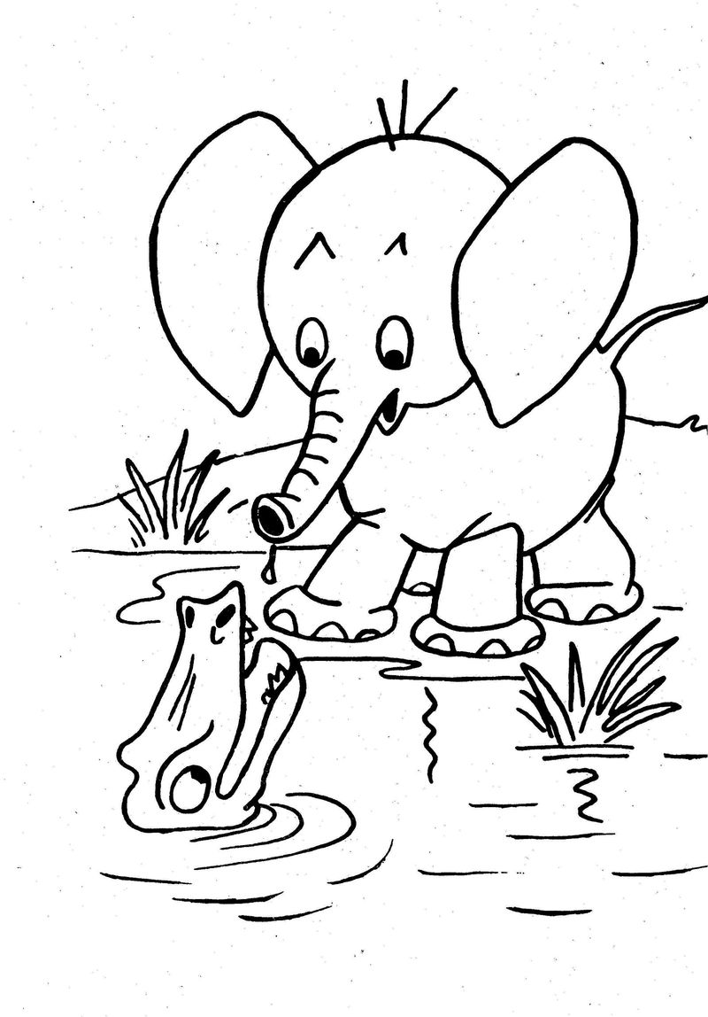 Coloring Books Forkids Animal Elephant 001