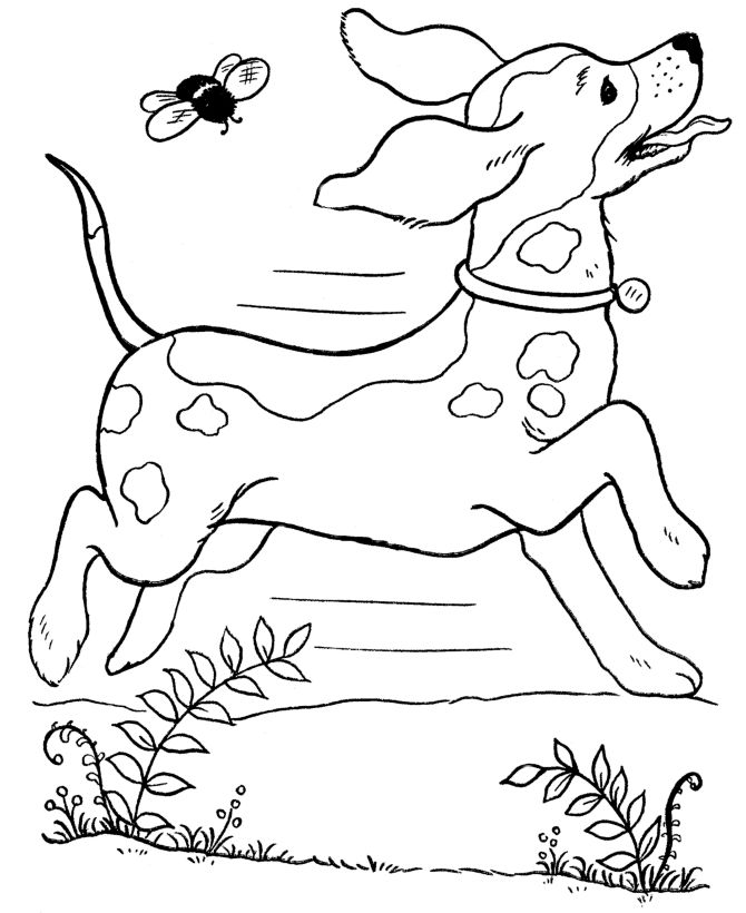 Coloring Page Of A Dog