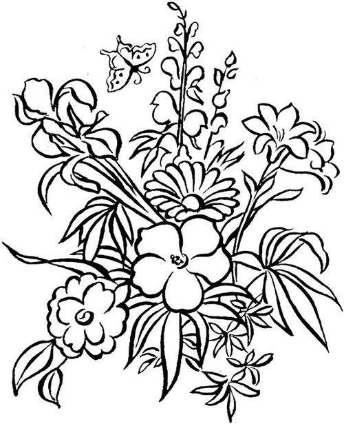 Coloring pages for adults flowers