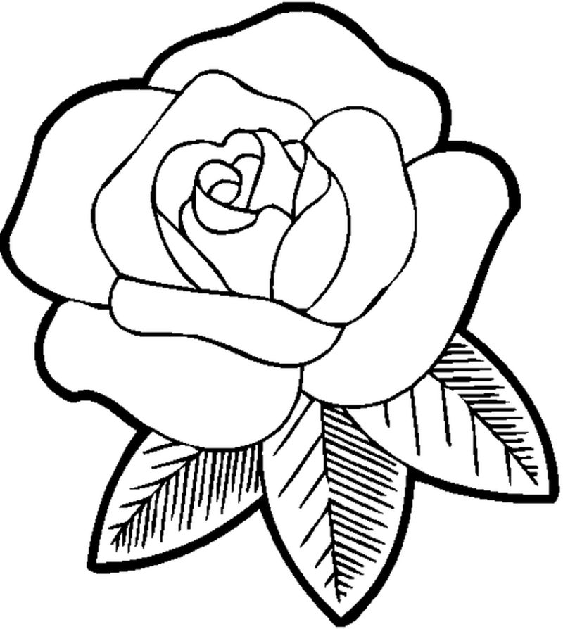 Coloring Pages For Girls Flower