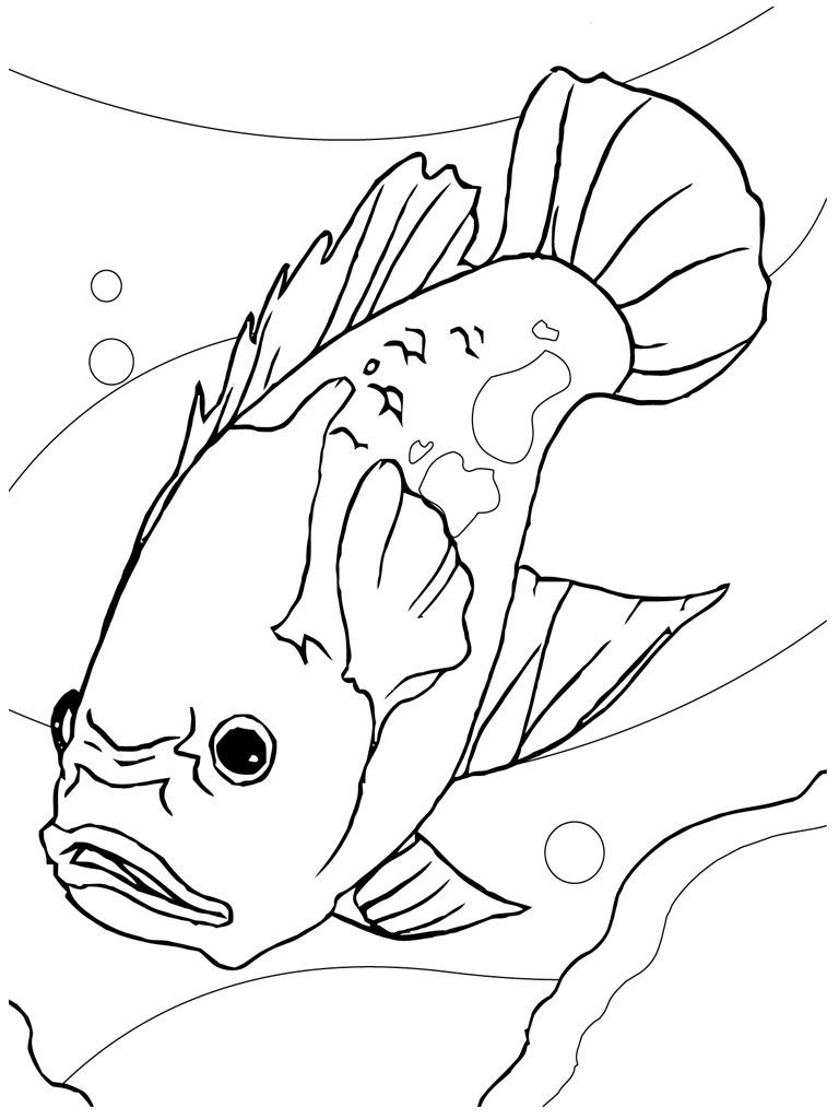 Coloring Pages Of A Fish