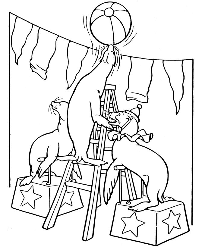Coloring Pages Of Circus Animals