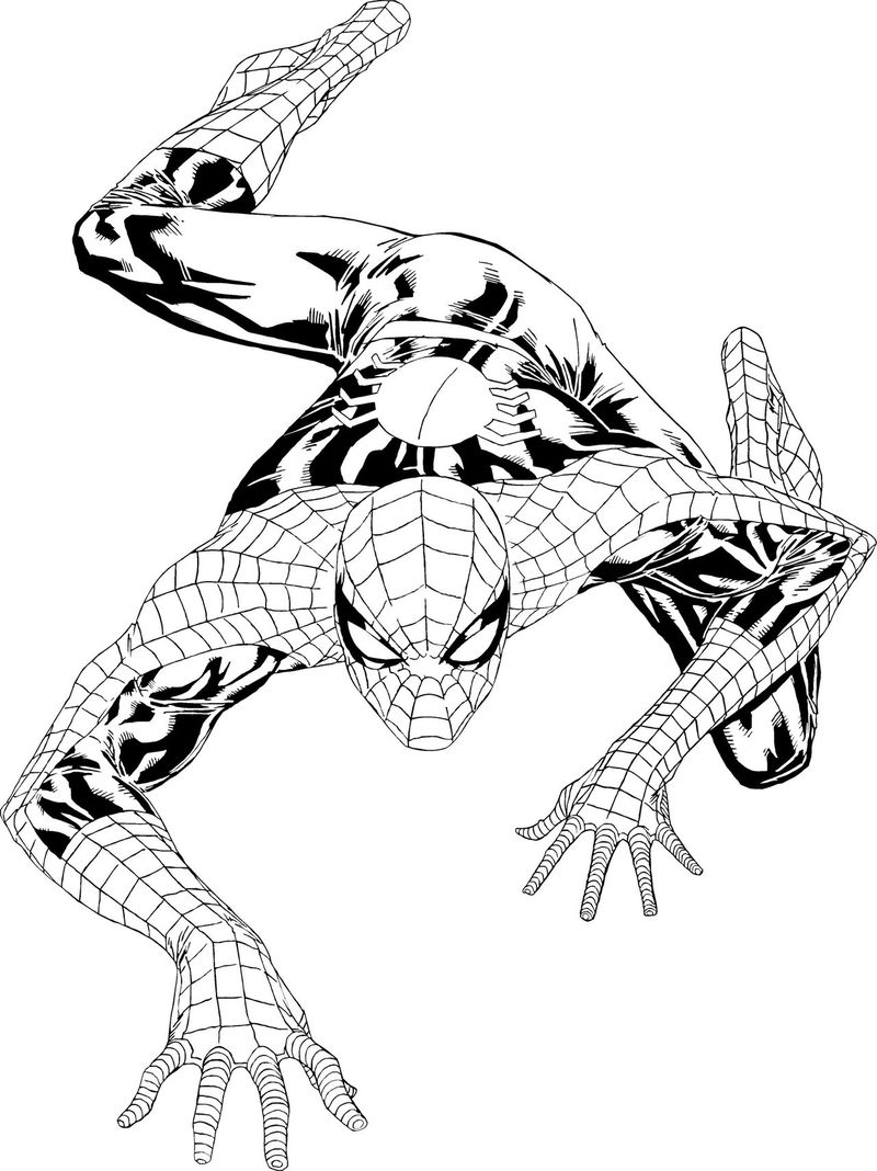 Coloring Pages Spiderman Printable