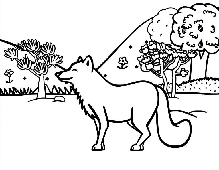 Coyote In Wild Animal Coloring Pages